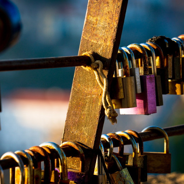 """Lovelocks in deep colour"" stock image"