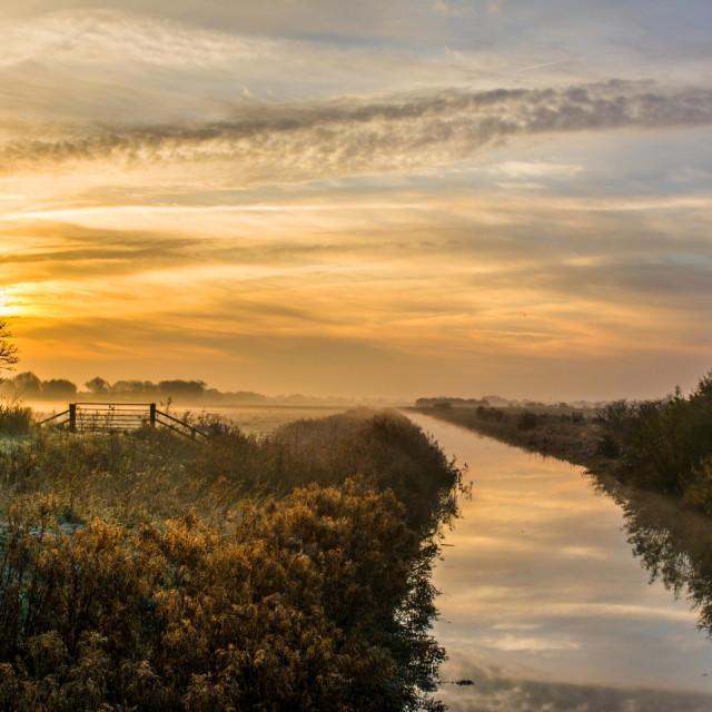 """Dawn River"" stock image"