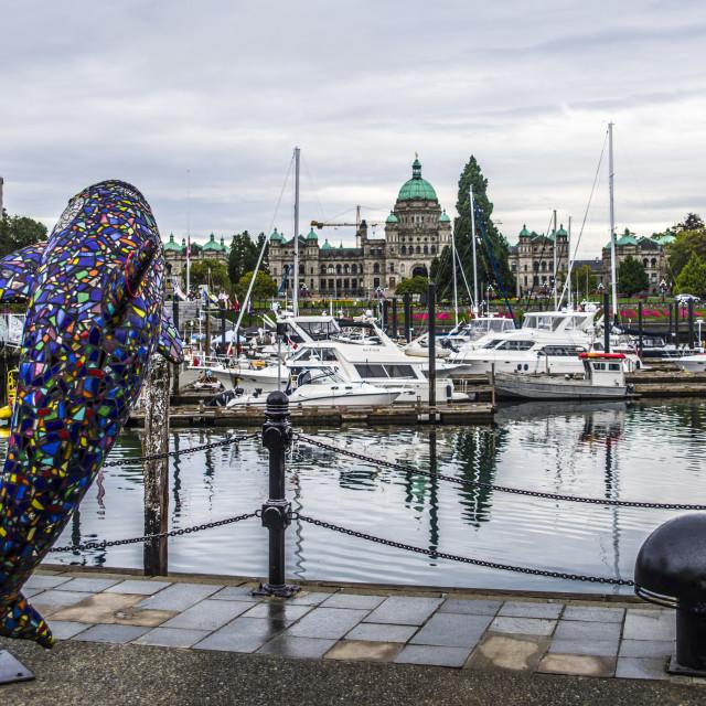 """Around The Inner Harbour, Victoria, BC, Canada"" stock image"