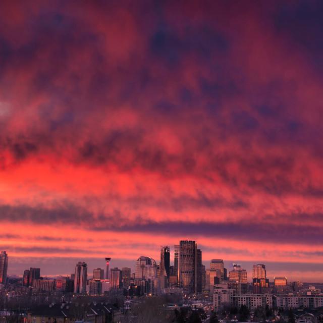 """""""Calgary Skyline"""" stock image"""