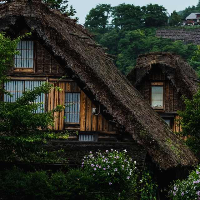 """""""Thatched Houses"""" stock image"""