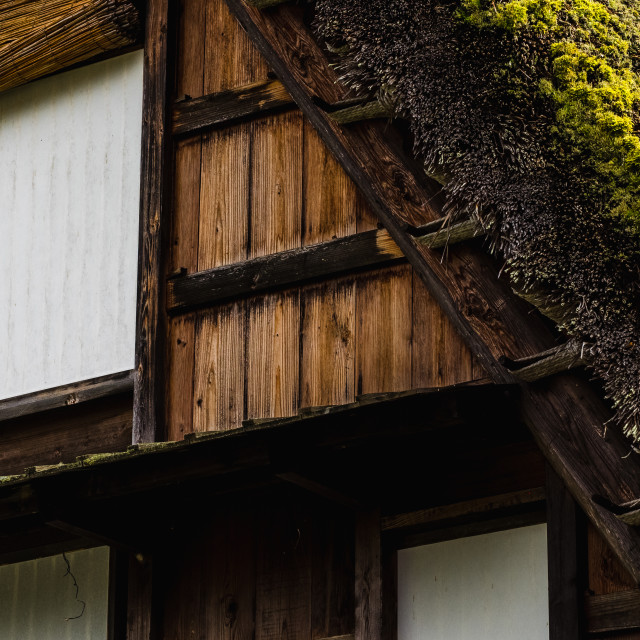 """""""Thatched House"""" stock image"""