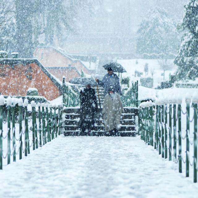 """Walking In The Winter Wonderland"" stock image"