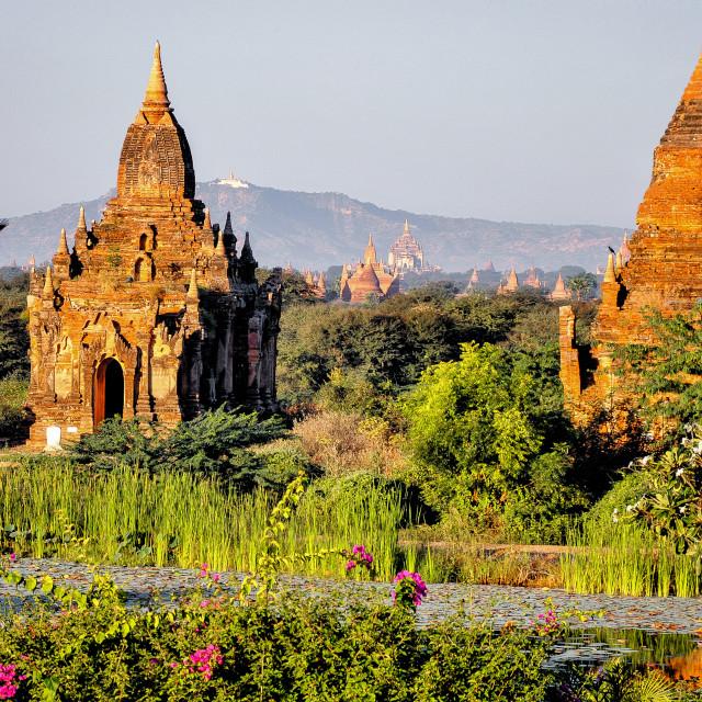 """""""Buddhist stupa"""" stock image"""