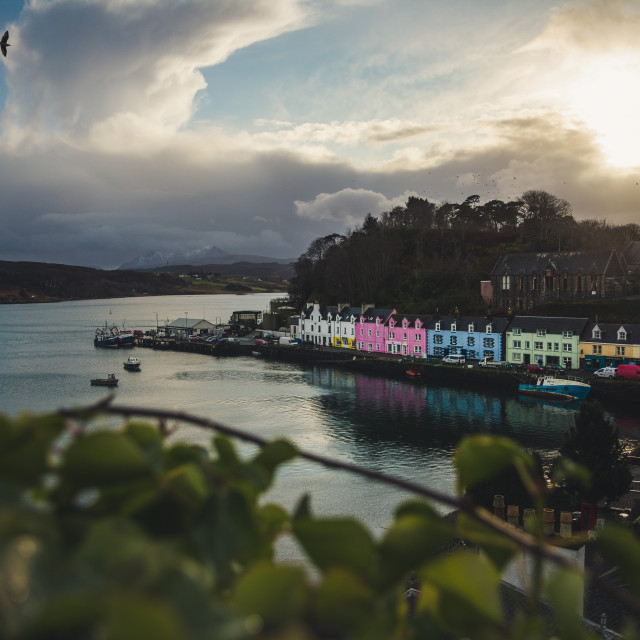 """""""Harbour of Portree"""" stock image"""