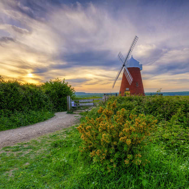 """Halnaker windmill in the South Downs National Park, West Sussex,"" stock image"