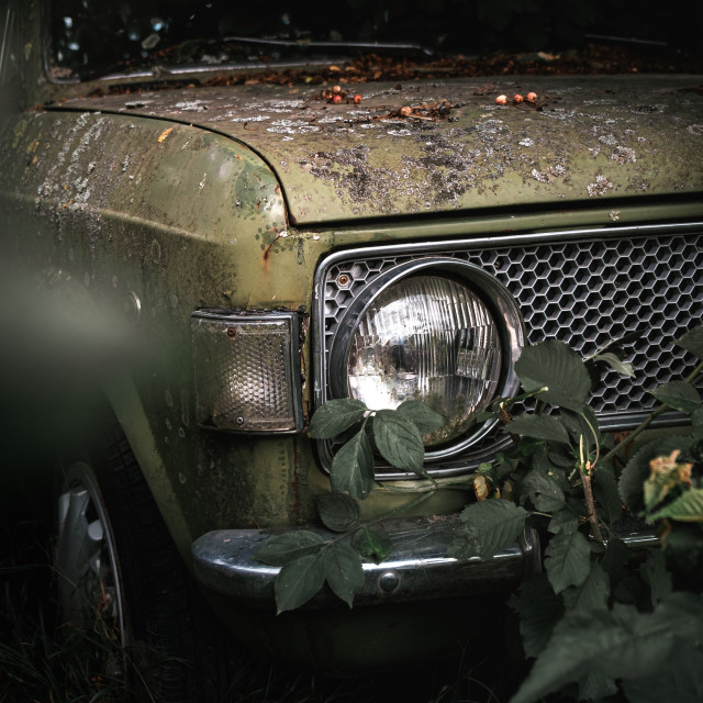 """""""Old timer car buried in nature"""" stock image"""