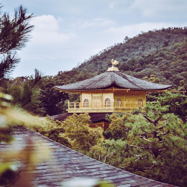 """Kinkaku-ji golden pavillion"" stock image"
