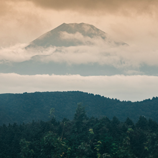 """""""Mt Fuji suspended in the clouds"""" stock image"""