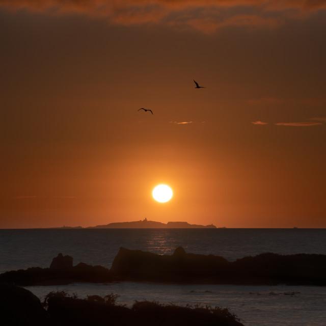 """""""Isle of May sunrise"""" stock image"""