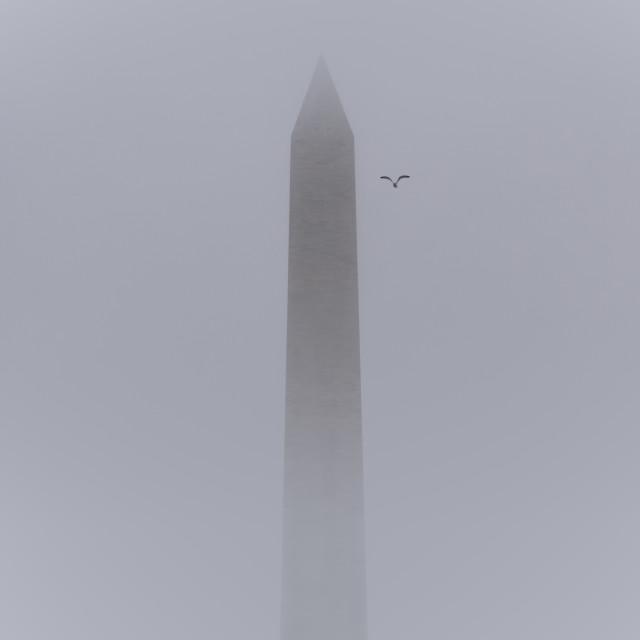 """""""Misty Washington Monument"""" stock image"""