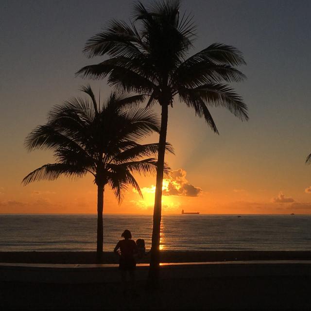 """Florida sunset"" stock image"