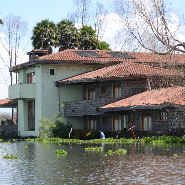 """Lake Naivasha"" stock image"