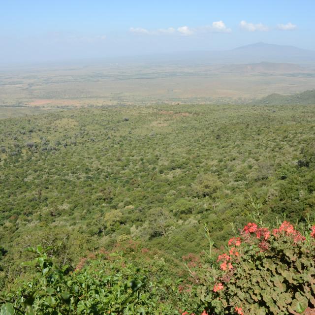 """Great Rift Valley, Kenya"" stock image"