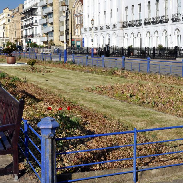 """""""flowerless carpet gardens_Eastbourne"""" stock image"""