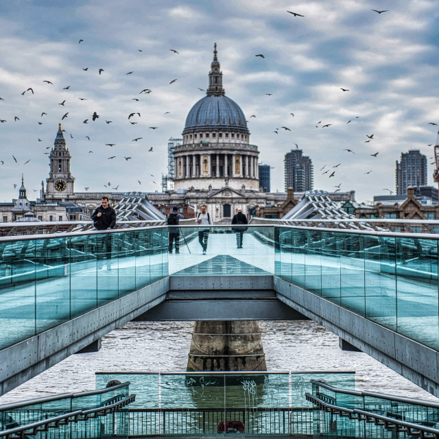"""Flock of birds above the Millennium Bridge, on the River Thames"" stock image"