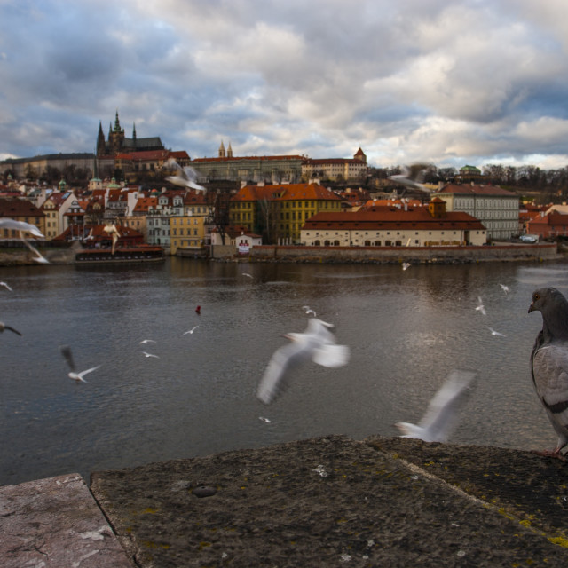 """Prague"" stock image"