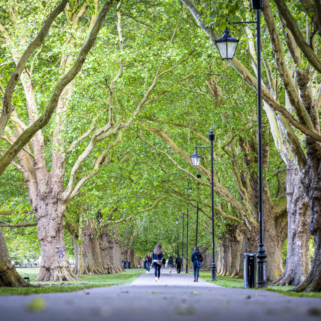 """Jesus Green, Cambridge UK."" stock image"