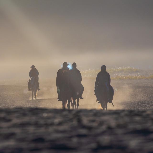 """""""silhouettes if horsemen on Bromo desert"""" stock image"""