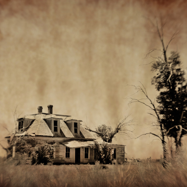 """""""Abandoned house in Estancia, New Mexico"""" stock image"""