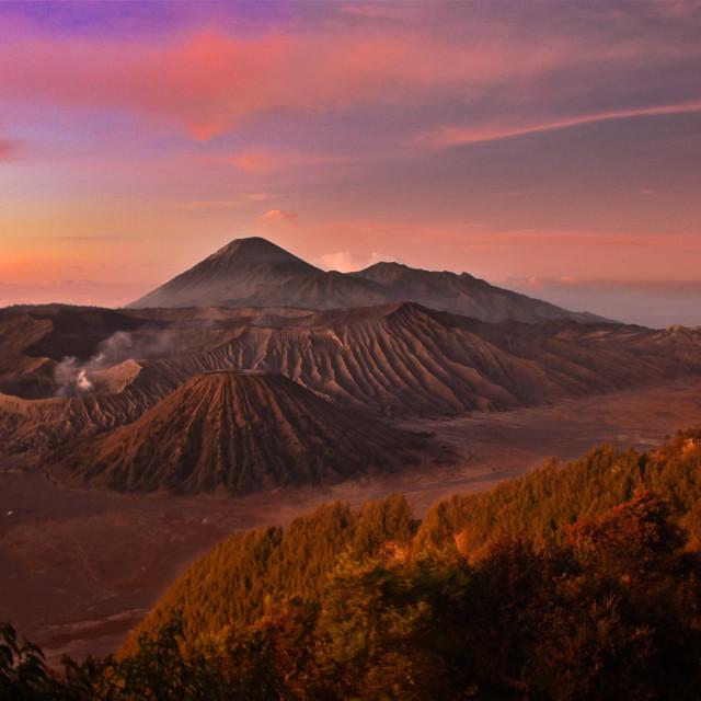 """""""Mount Bromo"""" stock image"""