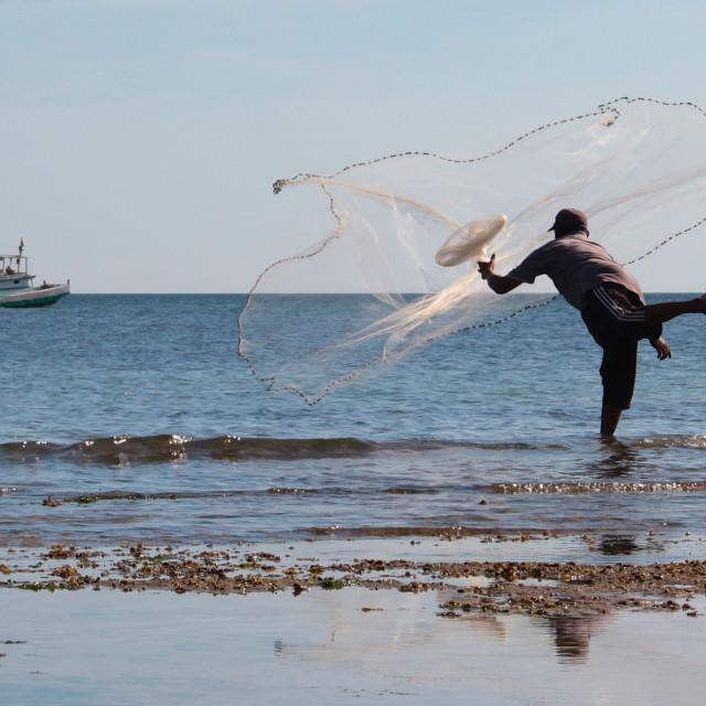 """Fisherman, Sulawesi"" stock image"