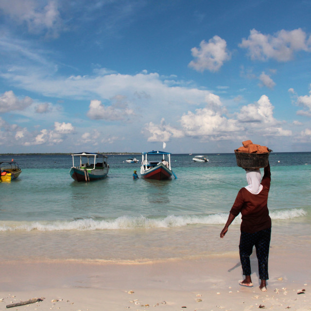 """Beach Builder, Sulawesi"" stock image"