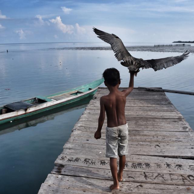 """""""Bajo Laut, Wakatobi"""" stock image"""