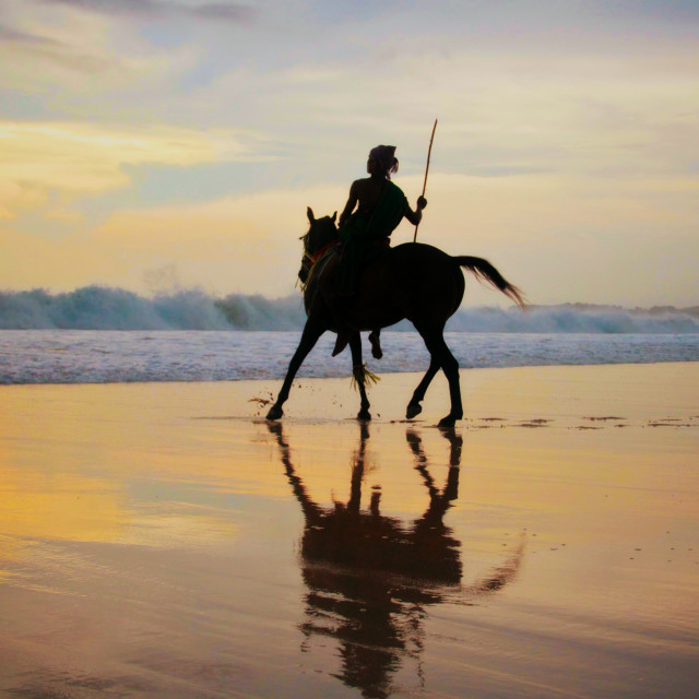"""Sumba Warrior"" stock image"