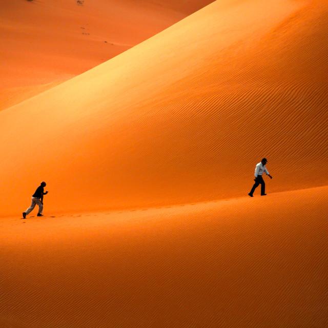 """""""Desert Walk"""" stock image"""