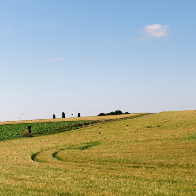 """""""Country road"""" stock image"""