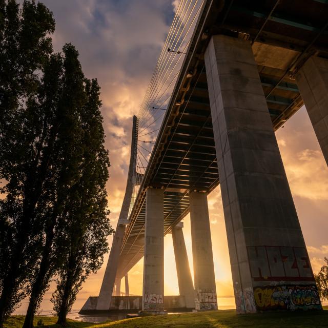"""""""Vasco da Gama Bridge at sunrise"""" stock image"""