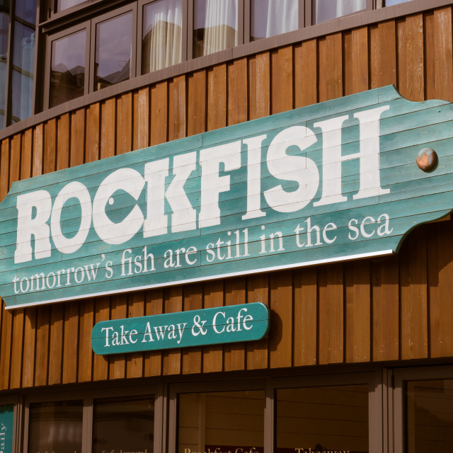 """Rockfish"" stock image"