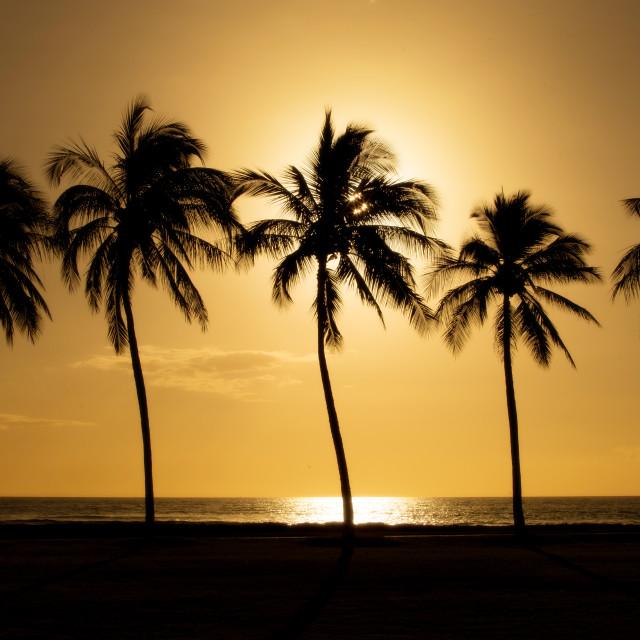 """Simple sunset"" stock image"