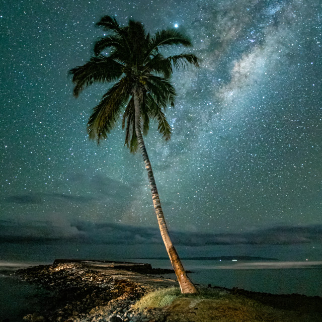 """""""Milkyway behind a palm tree"""" stock image"""