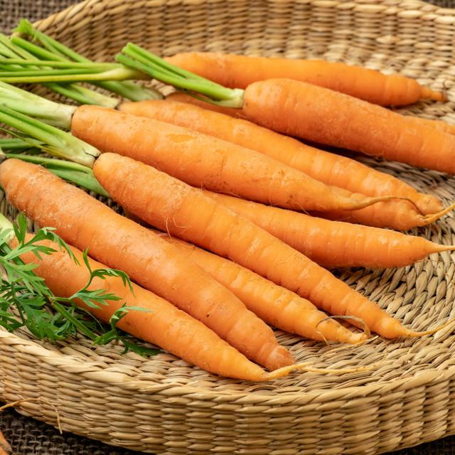 """""""Fresh carrot, root vegetable."""" stock image"""