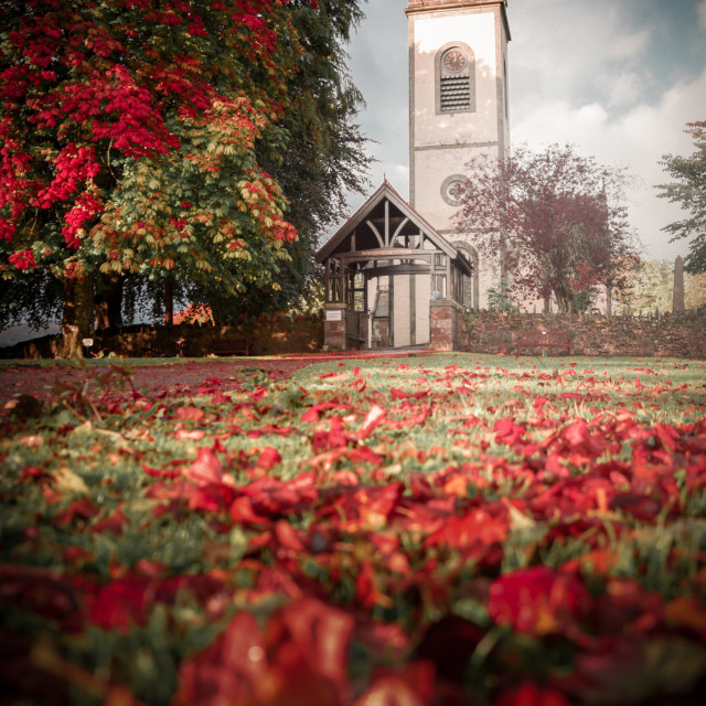 """""""Kenmore in Autumn"""" stock image"""
