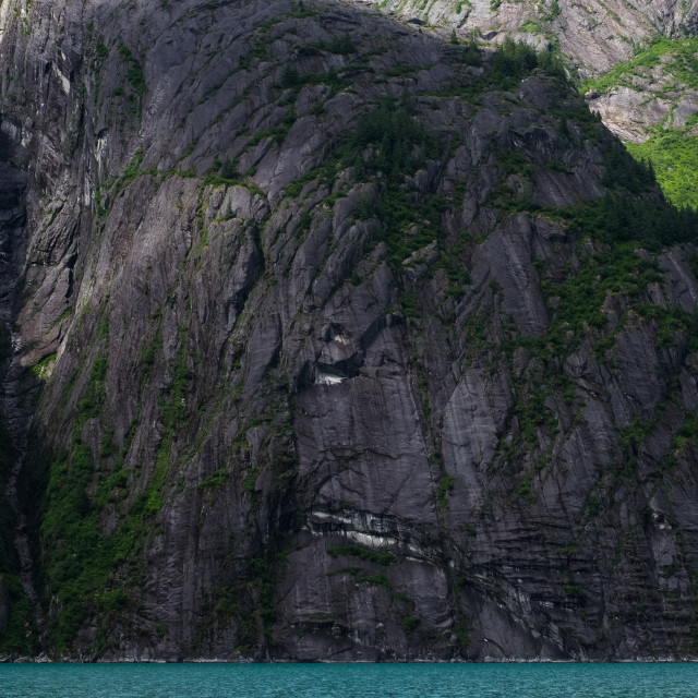 """""""Tracy Arm Fjord"""" stock image"""