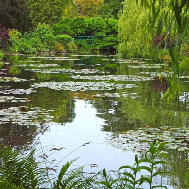 """""""Claude Monet's Water garden"""" stock image"""