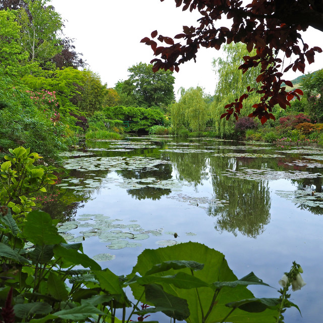 """""""The Water Garden at Giverny"""" stock image"""