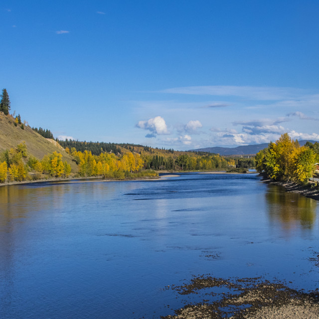 """Fall On The Nechako"" stock image"