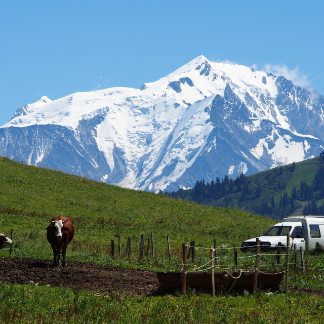 """""""Mont Blanc in Summer"""" stock image"""
