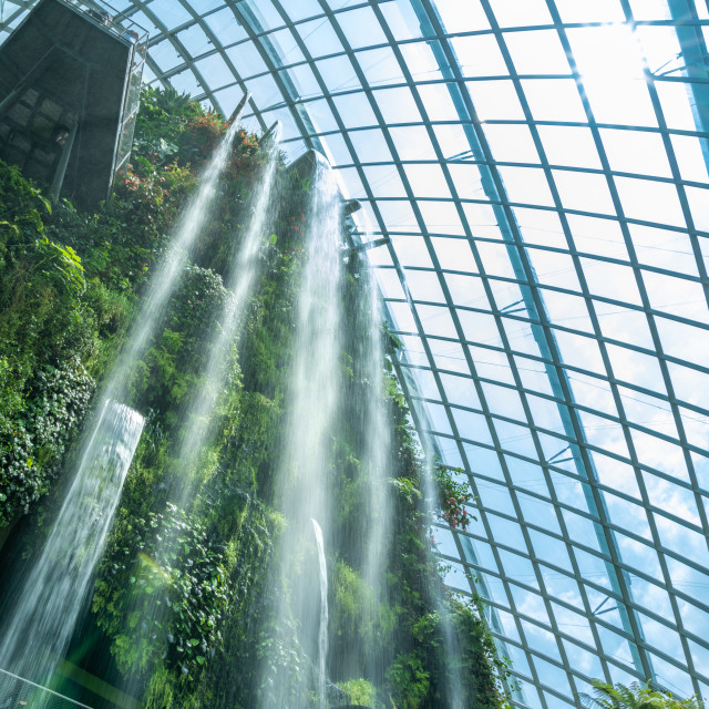 """Cloud Forest at the Gardens by the bay"" stock image"