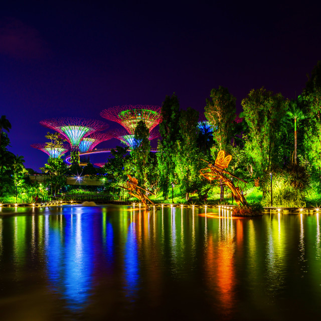 """Singapore Night Skyline at Gardens by the Bay. SuperTree Grove"" stock image"