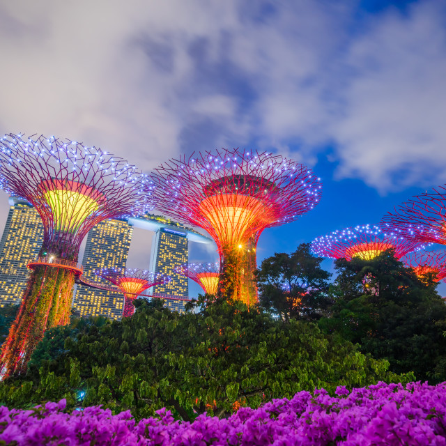 """Gardens by the bay in Singapore"" stock image"