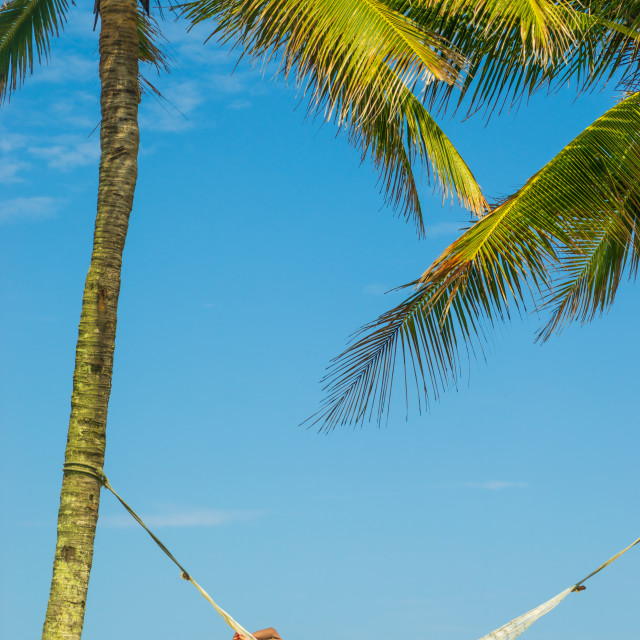 """""""Woman on a hammock at the beach"""" stock image"""