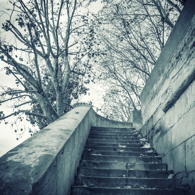 """""""Stairs by the Seine river in Paris"""" stock image"""