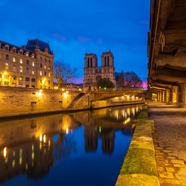 """""""Cathedral Notre Dame de Paris"""" stock image"""