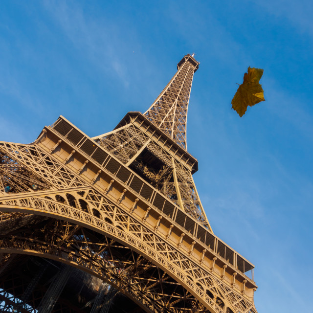 """""""View of the Eiffel tower in Paris."""" stock image"""