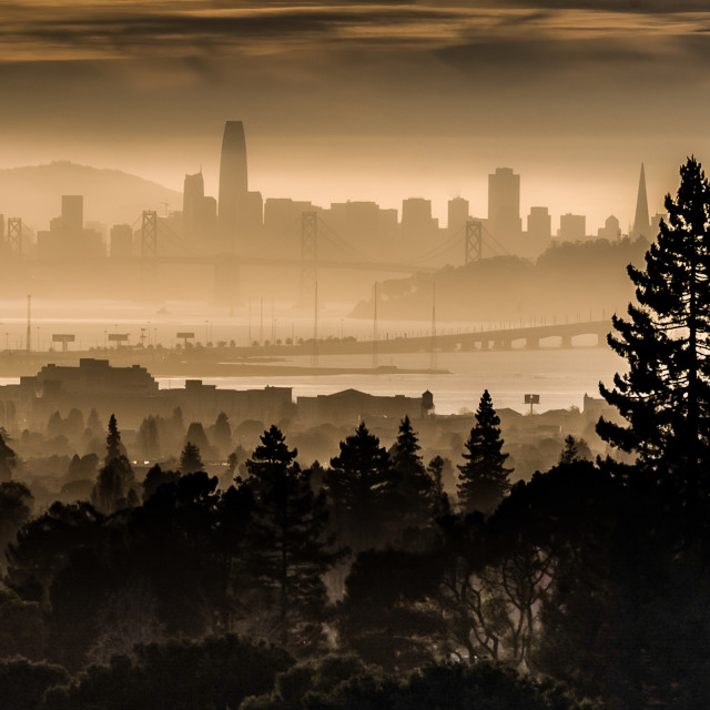 """My World - San Francisco From Berkeley"" stock image"